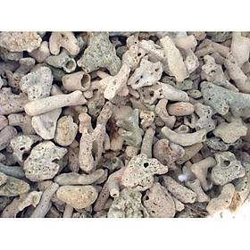 San Hô Vụn (6kg) vật liệu lọc cho bể cá, trang trí bể cá
