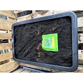 Bộ trồng rau muống gồm: 25dm3  đất sạch giàu dinh dưỡng, khay trồng rau, 100g hạt rau muống
