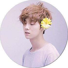 Huy hiệu in hình Luhan Lộc Hàm diễn viên thần tượng dễ thương huy hiệu cài áo (MẪU GIAO NGẪU NHIÊN)