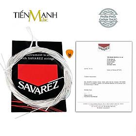 Savarez 500CJ - Bộ dây Đàn Guitar Cổ Điển Classic Ghi-ta High Tension (Không đóng hộp - Nylon Strings Sets) Hàng Chính Hãng - Kèm Móng Gẩy DreamMaker