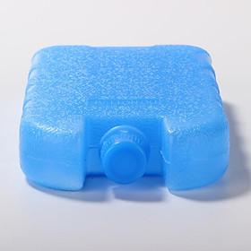 Bộ 5 Đá khô CO2 DK250 giữ lạnh sữa, bia, rượu, Hộp băng khô dạng gel cho quạt điều hòa, du lịch, phượt