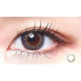 Cặp Kính Áp Tròng Dùng 1 Ngày Eye Secret KM1N - Tomita Purple