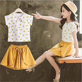 Bộ đồ áo thun và quần giả váy cho bé gái từ 3 đến 14 tuổi SE27