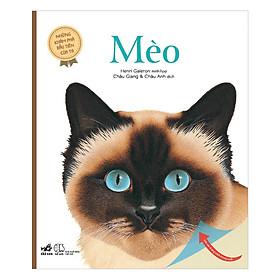 Những Khám Phá Đầu Tiên Của Tớ: Mèo
