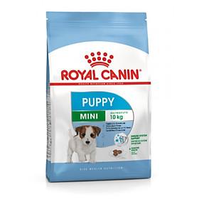Thức ăn Cho Chó Royal Canin Mini Junior 800g