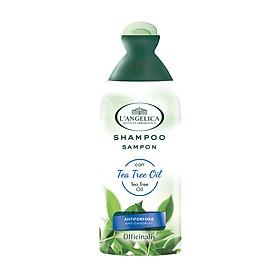 Dầu Gội Làm Sạch Gàu Từ Tinh Dầu Tràm Trà L'angelica Shampoo Tea Tree Oil Anti-dandruff 250ml