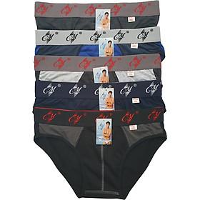 Combo 5 quần lót nam CM, Thương hiệu CITYMEN, đồ lót nam hàng Việt Nam xuất khẩu