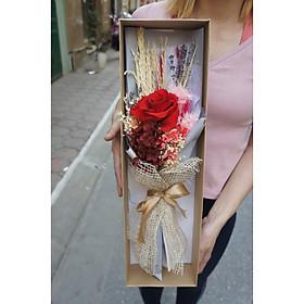 Hộp hoa hồng khô ướp 1 bông cỡ lớn