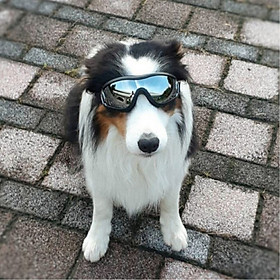 Fashion Pet Dog Goggles Stylish Uv Sunglasses Doggie Dog Accessories Elastic Eye Wear Protection Windproof Glasses Pet Supplies