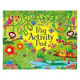 Usborne Big Tear-off Pads: Big Activity Pad