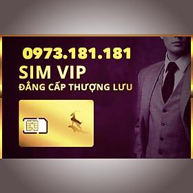 Sim taxi vip phát tài phát nhất 0973.181.181