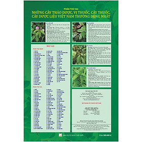 [Download Sách] Bộ tranh cây thuốc mẫu khám chữa bệnh y học cổ truyền