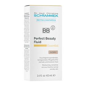 Kem che khuyết điểm màu da cho da thường và khô_BB Perfect beauty fluid