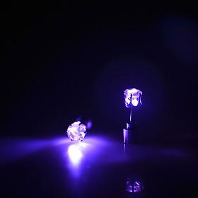 Hình đại diện sản phẩm Bông Tai Pha Lê Có Đèn LED