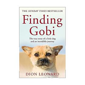 Hình đại diện sản phẩm Finding Gobi (Main Edition)