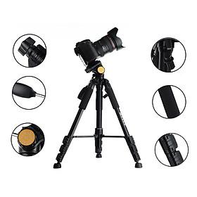 Chân máy ảnh Beike QZSD-111/Q111, Hàng nhập khẩu