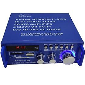 Amply Karaoke Bluetooth Mini Tely BIJ253 Kết Nối USB Thẻ Nhớ Sử Dụng Nguồn 220V Và 12V