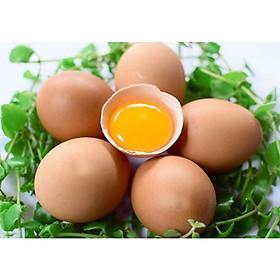 Trứng gà - 5 quả