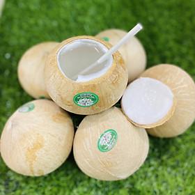 [[Chỉ Giao HN]] - Combo 3 Trái Dừa Tươi Tiện Lợi Safefruits