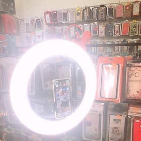 Bóng đèn livestream