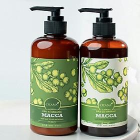 Cặp dầu gội và dầu xả Organic Macca ngăn ngừa rụng tóc