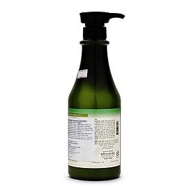 Combo 2 Dầu Gội Chống Rụng Tóc Marine Collagen Shampoo Organia-2