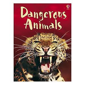 Usborne Dangerous Animals