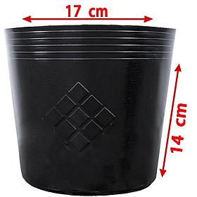 50 Chậu nhựa trồng cây C7 17x14x14cm trồng cây ăn trái và hoa-77210