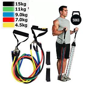 Bộ dây ngũ sắc đàn hồi kháng lực – dụng cụ tập thể dục đa năng – dụng cụ tập gym, thể hình tại nhà