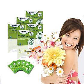 Chăm sóc hoa lâu tàn bằng bột dưỡng cho hoa cắt cành nhập khẩu Israel (Set 50 gói) giữ hoa lâu tàn gấp 2 lần bình thường và 14 ngày không thay nước mới