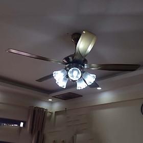 Quạt trần đèn 5 cánh 1008