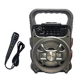 Loa xách tay bluetooth hát karaoke P669 tặng kèm micro có dây - giao màu ngẫu nhiên