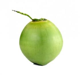 [Chỉ giao HCM] Dừa xiêm trái-3000936