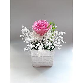 Lọ hoa khô Nắng hồng