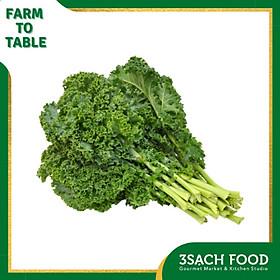 Cải xoăn Kale (250gr/gói) - Ngọn cải non, mềm, ngọt và nhiều chất dinh dưỡng - Chuẩn An Toàn VietGap