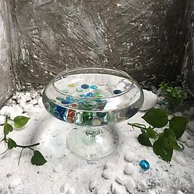 Bể cá để bàn -Bể Cá thủy Tinh Hồ Cá Mini Chậu Cây Có Chân -DC01-DC02-C03