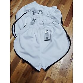 Combo 2 Quần Shorts nữ thun poly   co giãn 4 chiều  Rumy'h Size M L Xl Hết màu Xám
