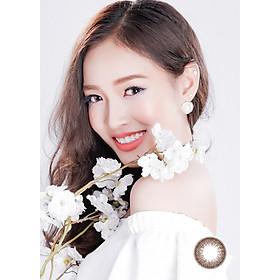 [Một cặp] Kính Áp Tròng Dùng 1 Ngày Eye Secret KM1N - Taipei Brown