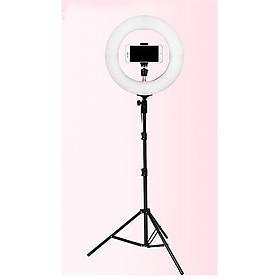 Đèn tripod livetream makeup, quay phim ,chụp ảnh đa năng