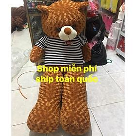 Gấu bông Tedy Khổ 1m7 ảnh thật 100%( shop miễn ship)