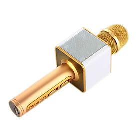 Míc Hát Karaoke Kiêm Loa Bluetooth SD-08