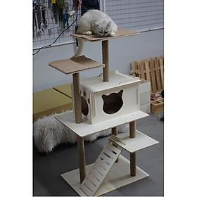 Nhà Cây Cho Mèo 2 Tầng Hiện Đại #CH005