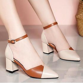 Giày cao gót nữ bít mũi 7p phối 2 màu nude và nâu thanh lịch sang trọng CG03DO