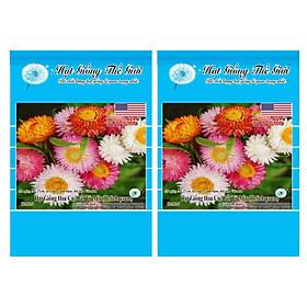 Bộ 2 Gói Hạt Giống Hoa Cúc Bất Tử - Mix Màu (Helichrysum) 100h