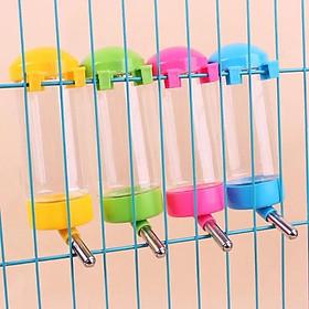 Bình nước bi treo chuồng cho thú cưng (Màu ngẫu nhiên)
