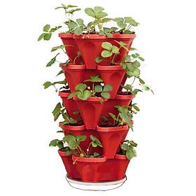 Bộ 5 chậu tháp trồng cây thủy canh / trồng cây bằng đất , chậu nhựa trồng rau , hàng cao cấp độ bên trên 5 năm tiện lợi dễ dàng sử dụng