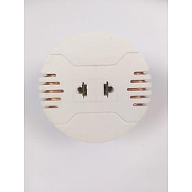 Bộ đổi nguồn điện 220V sang 110V 100VA (dùng cho những thiết bị có công suất dưới 80W)