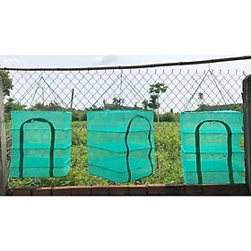 Lồng phơi khô 247 - Chống côn trùng, Bảo đảm an toàn vệ sinh thực phẩm