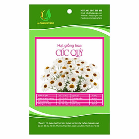 Hạt giống hoa Cúc quỳ Golden Seeds 50 Hạt