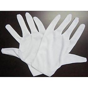 Bao tay trắng, găng tay vải cotton, thun poly dùng cho lễ tân, sự kiện, kiểm định, bảo vệ, tiếp tân. Gói 5 đôi
